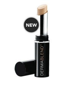 Vichy Dermablend Corrective Stick