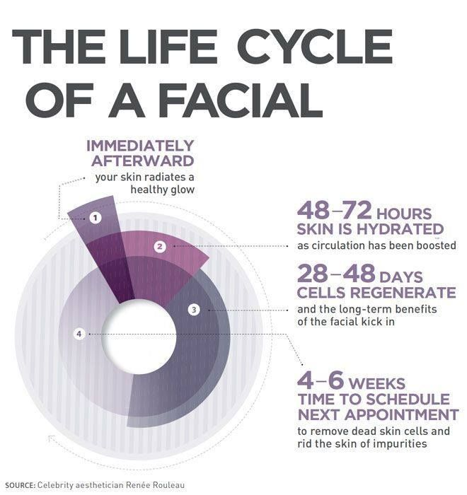 The Lift Cycle of a Facial Infographic