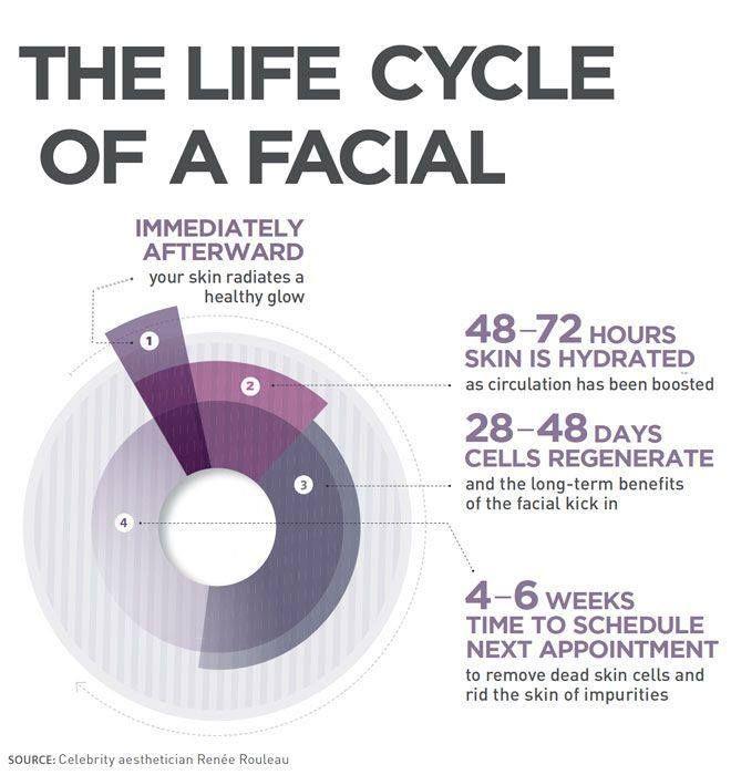 Facial Infographic